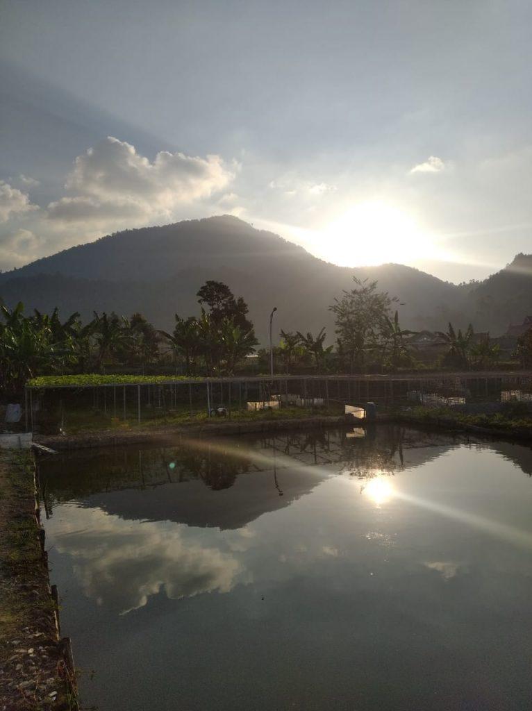 Tempat Menginap Paling Murah di Ciwidey Bandung