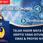 Solusi Mata Uang Digital Terbaik di Dunia | Bersama Nagaya (NGY) Hybrid Cryptocurrency | WA. 0813 1909 7047